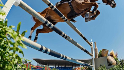 Accédez à une écurie de jumping internationale c'est possible !! 😉