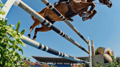 Accédez à une écurie de jumping internationale c'est possible !! 😉