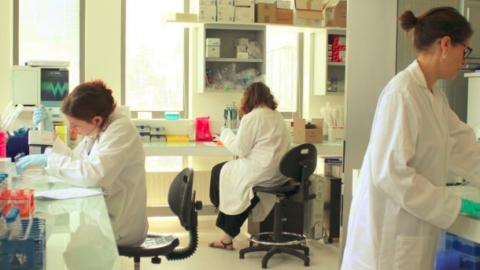 Ces chercheurs veulent révolutionner les traitements des maladies inflammatoires chroniques !