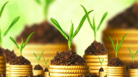 Pourquoi investir son épargne sur du prêt participatif ?